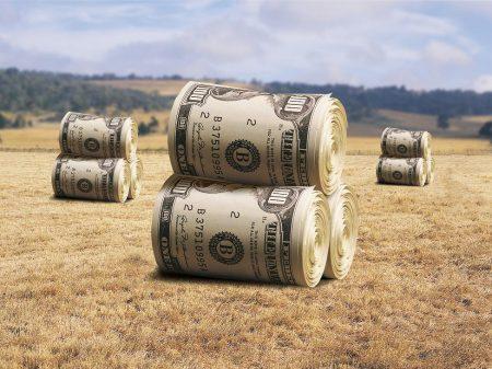 Продать землю сельхозназначения