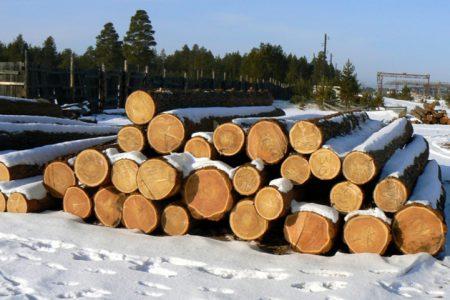 Лес на строительство дома